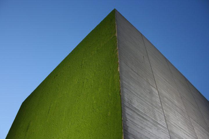 Monumental growing green wall