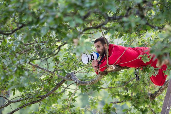 Man perched high in a tree canopy calls with a megaphone.