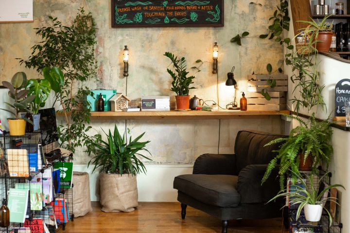 Bookshelves, books, plants and an armchair in the corner of a cafe