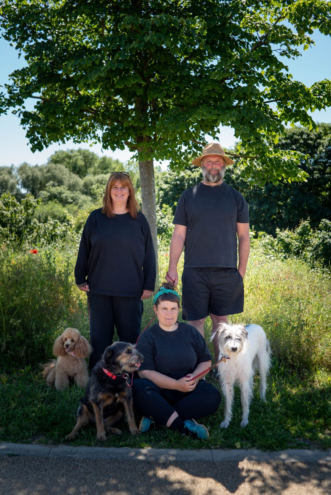 Three people under a tree with three dogs